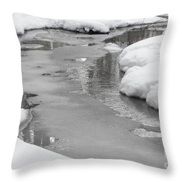 Winter Stream Throw Pillow by Erick Schmidt