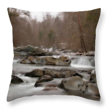 Throw Pillow featuring the photograph Winter Stream by Geraldine DeBoer
