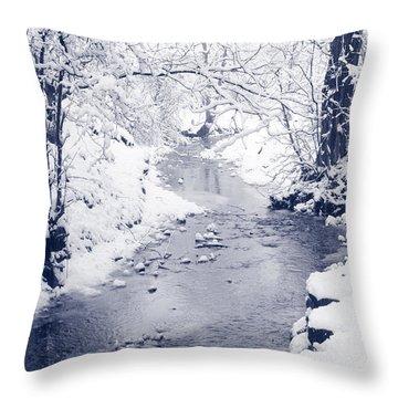 Throw Pillow featuring the photograph Winter Stream by Liz Leyden
