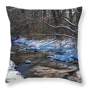 Winter Stream Throw Pillow by Mikki Cucuzzo