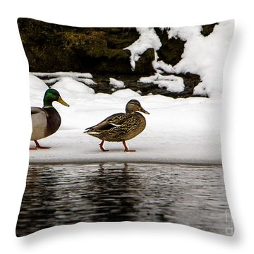 Winter Stroll Throw Pillow