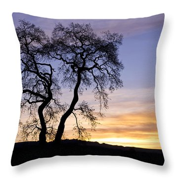Throw Pillow featuring the photograph Winter Sunrise With Tree Silhouette by Priya Ghose