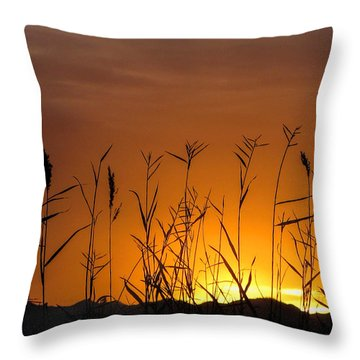 Winter Sunrise Throw Pillow by Tammy Espino