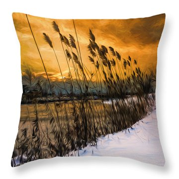 Winter Sunrise Through The Reeds - Artistic Throw Pillow