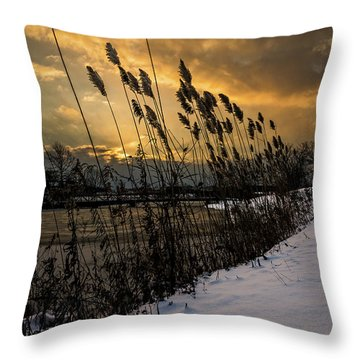 Winter Sunrise Through The Reeds Throw Pillow