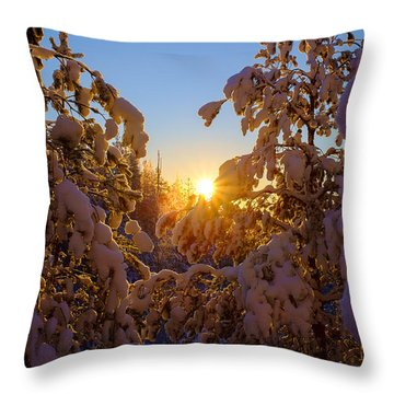 Winter Sunset Behind The Trees Throw Pillow
