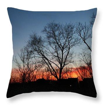 Winter Sunset Throw Pillow by Karen Adams