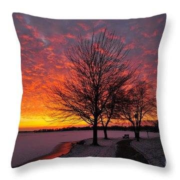 Winter Sunset Throw Pillow by Terri Gostola