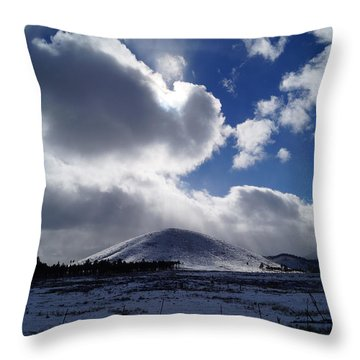 Winter Sunshine Throw Pillow