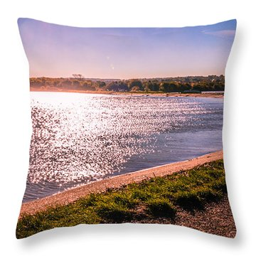Winter Sunshine Throw Pillow by Dawn OConnor
