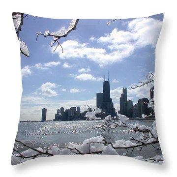 Winter Sunshine Throw Pillow