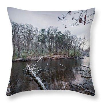 Winter Swans Throw Pillow
