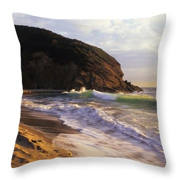Winter Swells Strands Beach Throw Pillow