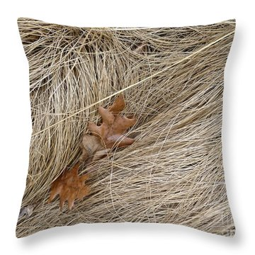 Winter Textures Throw Pillow by Tim Good