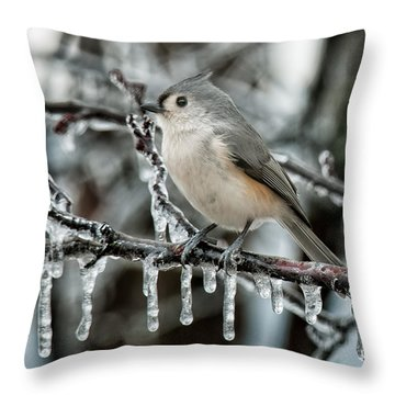 Winter Titmouse Throw Pillow by Lara Ellis