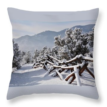 Winter Trail Beckons Throw Pillow