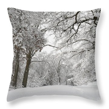 Winter Trail Throw Pillow by E B Schmidt