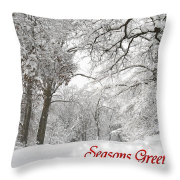 Winter Trail Seasonal Card Throw Pillow by E B Schmidt