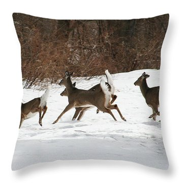 White Tailed Deer Winter Travel Throw Pillow by Neal Eslinger