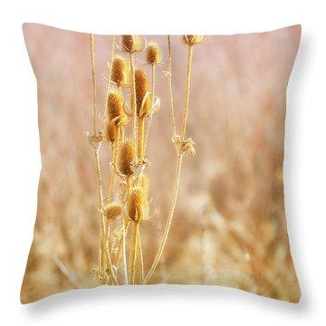 Winter Treasure Throw Pillow