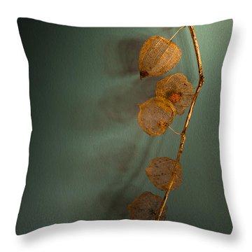 Winter Treasures Throw Pillow by Jan Bickerton
