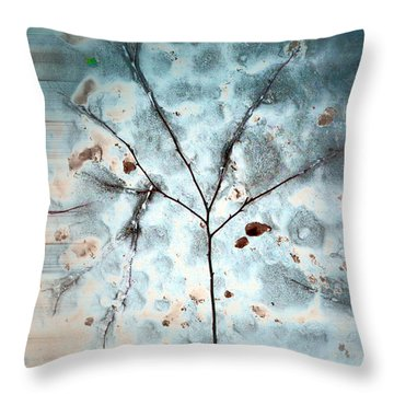 Throw Pillow featuring the photograph Winter Tree Abstract by Beth Sawickie