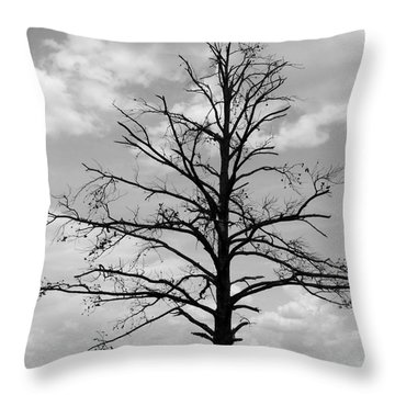 Winter Tree Throw Pillow by Andrea Anderegg