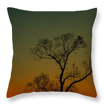 Winter Tree At Sunset Throw Pillow