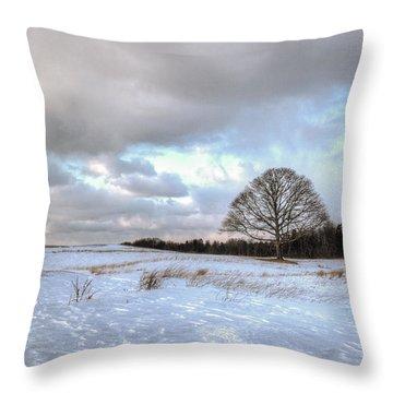 Winter Tree Throw Pillow by Steve Gravano
