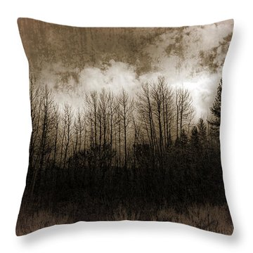 Winter Trees Throw Pillow by Dianne Phelps