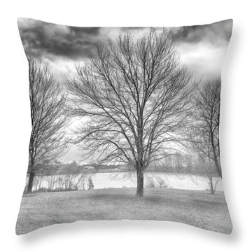 Winter Trees Throw Pillow by Howard Salmon