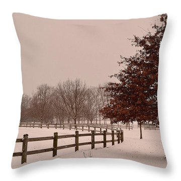 Winter Trees In Park Throw Pillow