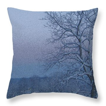Winter Trees On West Michigan Farm At Sunrise Throw Pillow