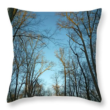 Throw Pillow featuring the photograph Winter Trees by Pete Trenholm