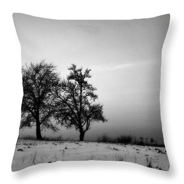 Winter Trees Throw Pillow by Tomasz Dziubinski