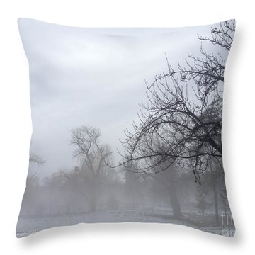 Throw Pillow featuring the photograph Winter Trees With Mist by Jeannie Rhode