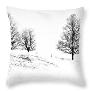 Winter Trinity Infrared Throw Pillow by Steve Harrington