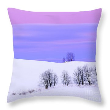 Winter Twilight Landscape Throw Pillow