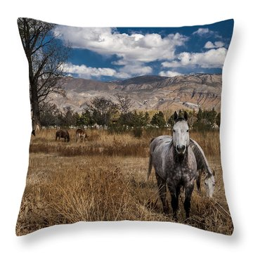 Winter Vacation Throw Pillow