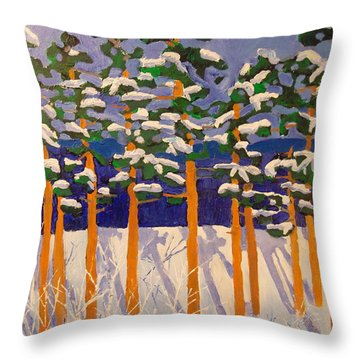 Winter Valley Throw Pillow