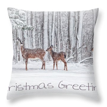 Winter Visits Card Throw Pillow