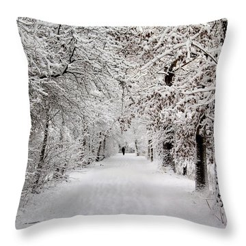 Winter Walk In Fairytale  Throw Pillow