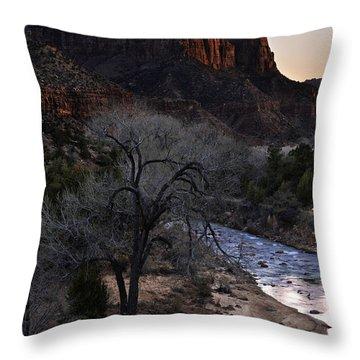 Winter Watchman Throw Pillow