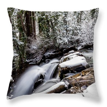 Winter Water Fall 2 Throw Pillow
