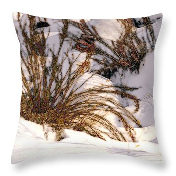 Winter Weeds Throw Pillow by Kae Cheatham