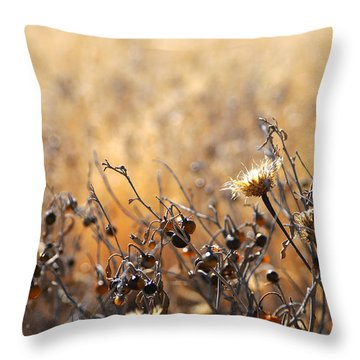 Throw Pillow featuring the photograph Winter Weeds by Karen Slagle