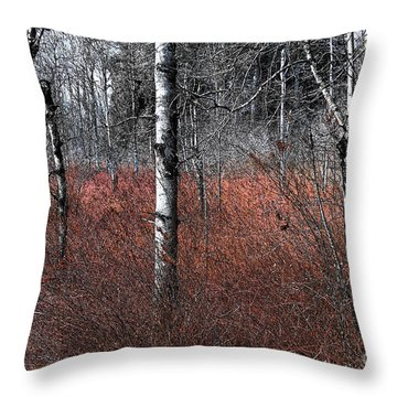 Throw Pillow featuring the photograph Winter Wetland I by Jani Freimann