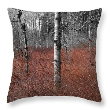 Winter Wetland Throw Pillow