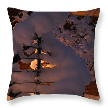 Winter Whirligig Throw Pillow by Jim Brage