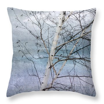 Winter White Birch  Throw Pillow